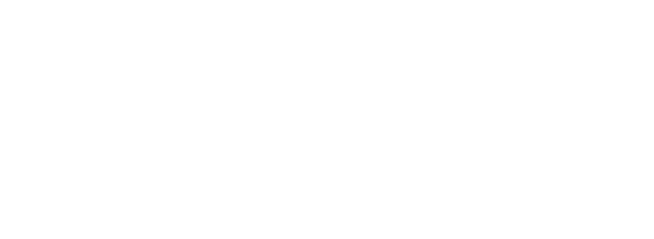 wowzerz digital marketing